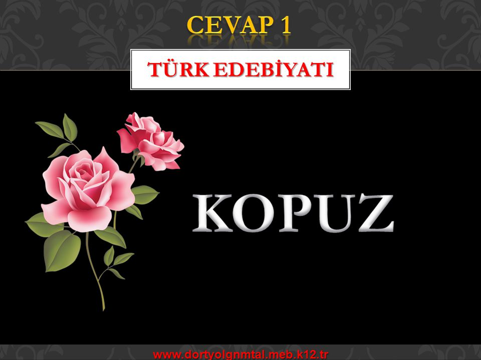 CEVAP 1 TÜRK EDEBİYATI KOPUZ www.dortyolgnmtal.meb.k12.tr