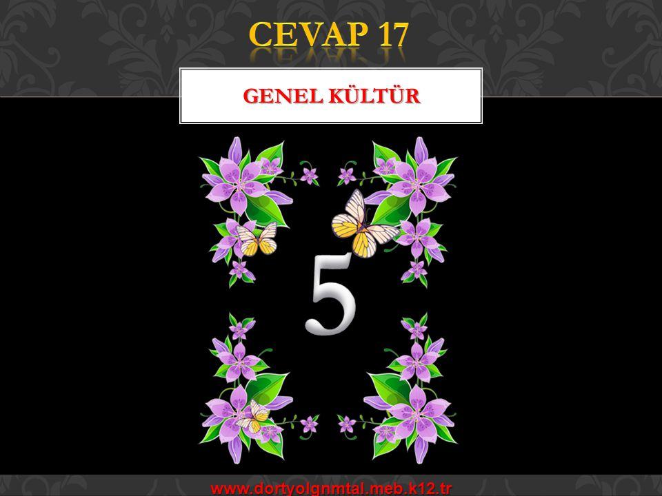 CEVAP 17 Genel kültür 5 www.dortyolgnmtal.meb.k12.tr