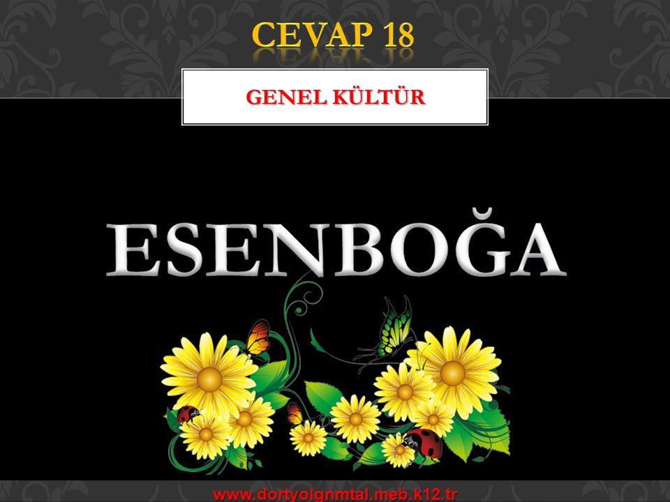 CEVAP 18 Genel kültür ESENBOĞA www.dortyolgnmtal.meb.k12.tr