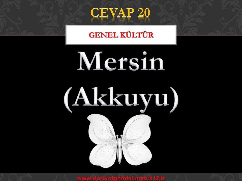 CEVAP 20 Genel kültür Mersin (Akkuyu) www.dortyolgnmtal.meb.k12.tr