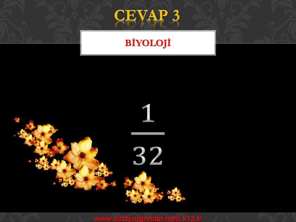 CEVAP 3 BİYOLOJİ 1 32 www.dortyolgnmtal.meb.k12.tr