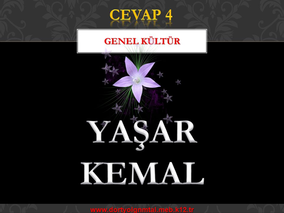 CEVAP 4 GENEL KÜLTÜR YAŞAR KEMAL www.dortyolgnmtal.meb.k12.tr