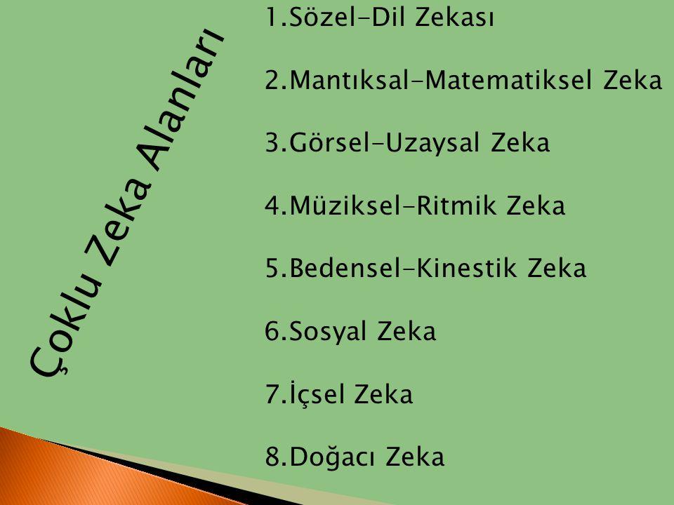 Çoklu Zeka Alanları Sözel-Dil Zekası Mantıksal-Matematiksel Zeka