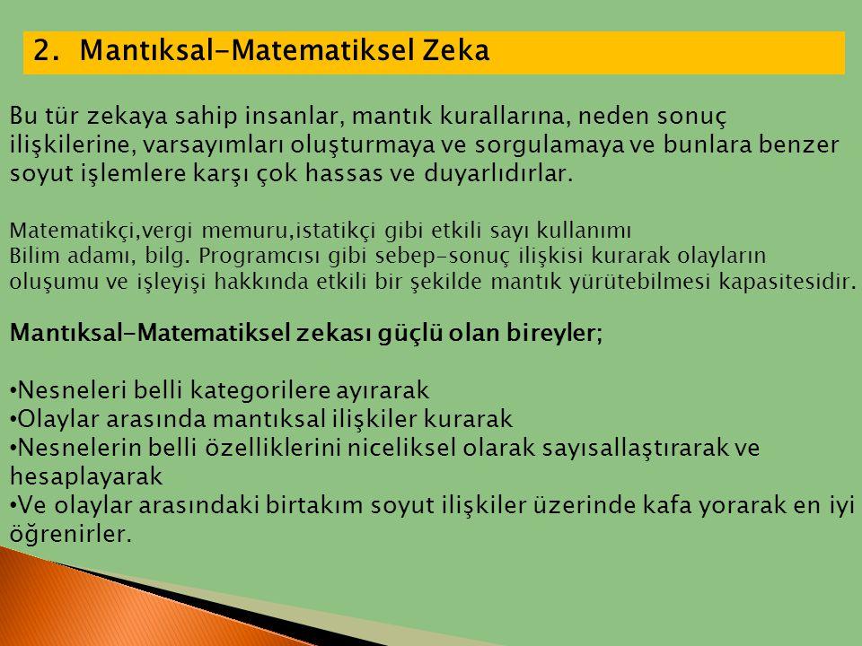 2. Mantıksal-Matematiksel Zeka