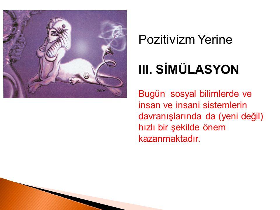 Pozitivizm Yerine III. SİMÜLASYON