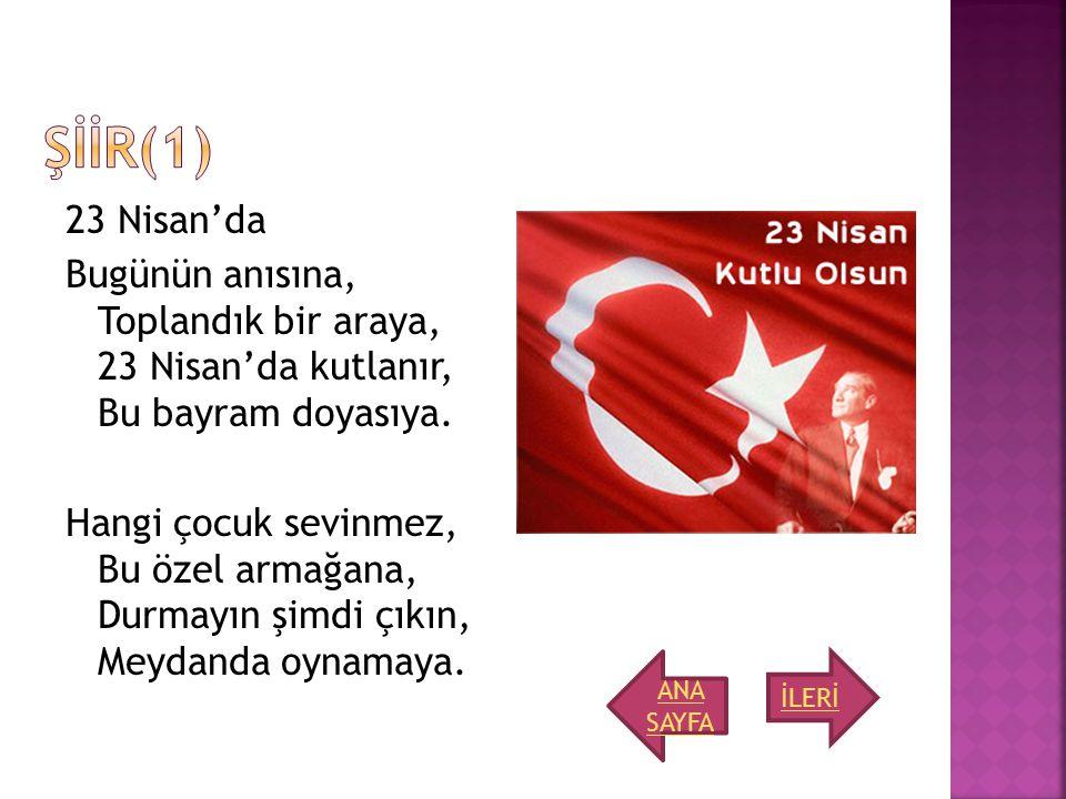 ŞİİR(1)