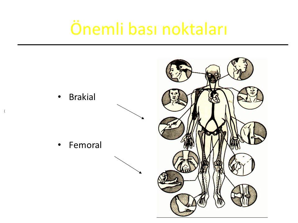 Önemli bası noktaları Brakial Femoral (
