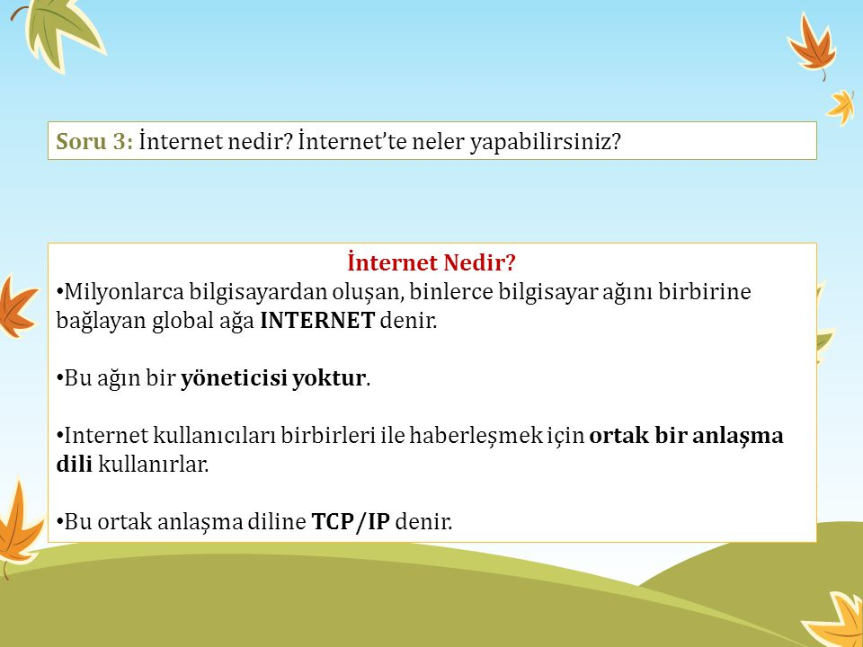 Soru 3: İnternet nedir İnternet'te neler yapabilirsiniz