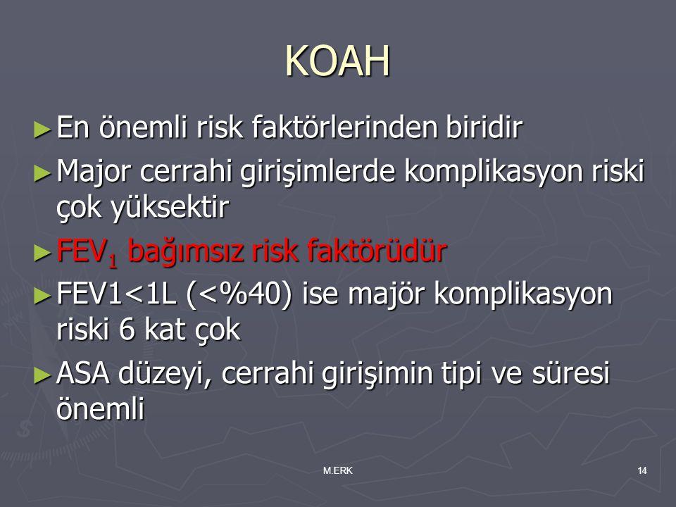 KOAH En önemli risk faktörlerinden biridir