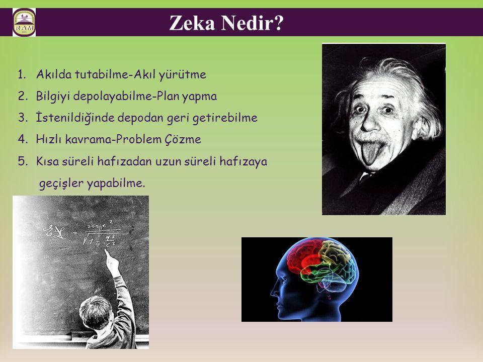 Zeka Nedir Akılda tutabilme-Akıl yürütme