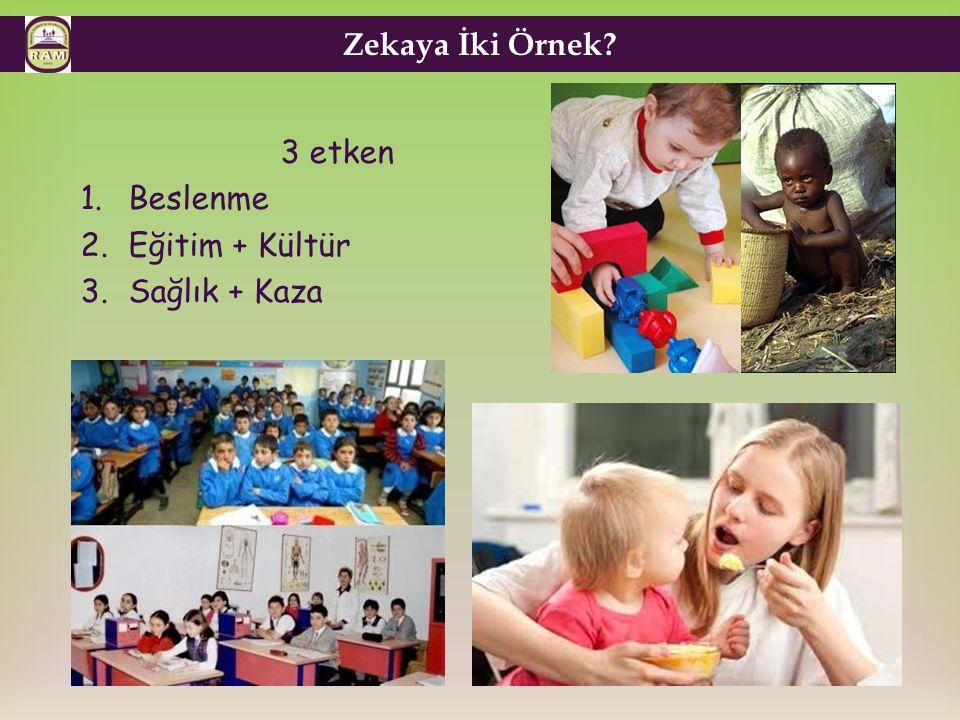 Zekaya İki Örnek 3 etken Beslenme Eğitim + Kültür Sağlık + Kaza 7