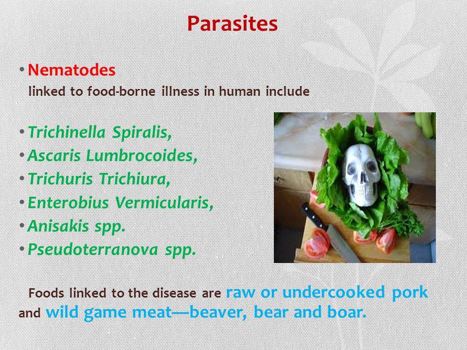 Parasites Nematodes Trichinella Spiralis, Ascaris Lumbrocoides,