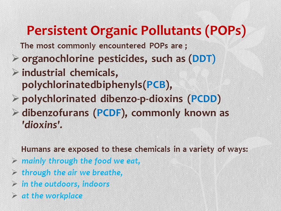 persistent organic pollutants and food allergy essay The concern about pops persistent organic pollutants and humans are high up the food chain and so absorb the greatest concentrations.