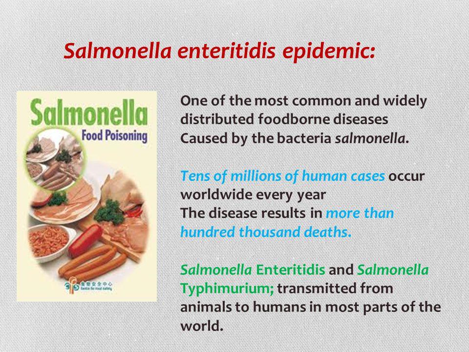Salmonella enteritidis epidemic: