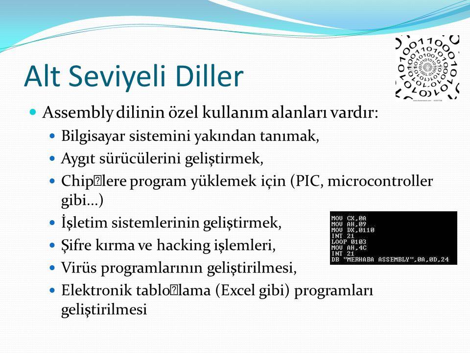 Alt Seviyeli Diller Assembly dilinin özel kullanım alanları vardır: