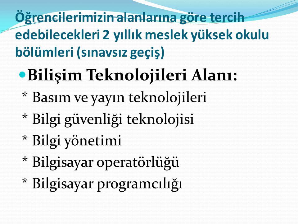 Bilişim Teknolojileri Alanı:
