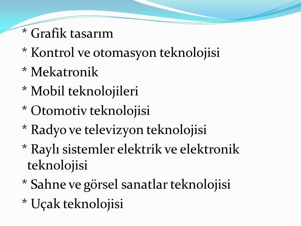 Grafik tasarım. Kontrol ve otomasyon teknolojisi. Mekatronik