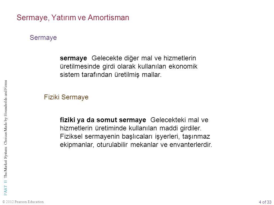 Sermaye, Yatırım ve Amortisman