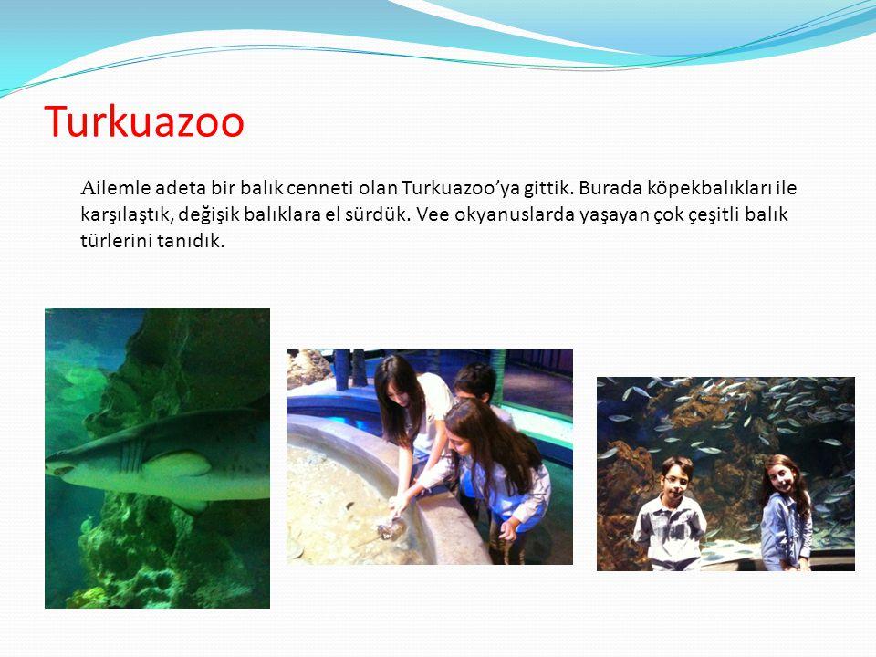 Turkuazoo