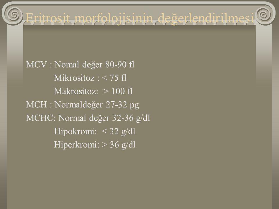 Eritrosit morfolojisinin değerlendirilmesi