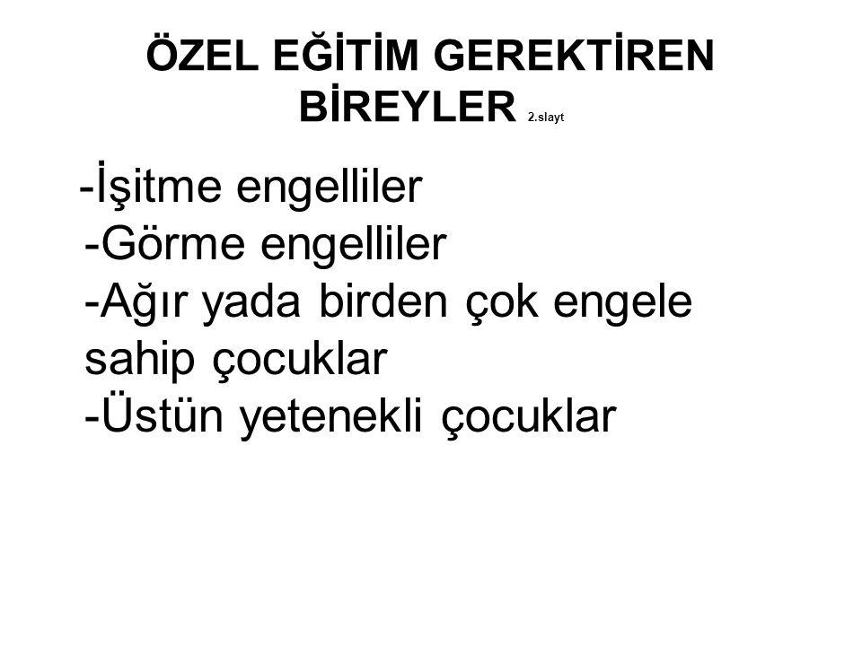 ÖZEL EĞİTİM GEREKTİREN BİREYLER 2.slayt