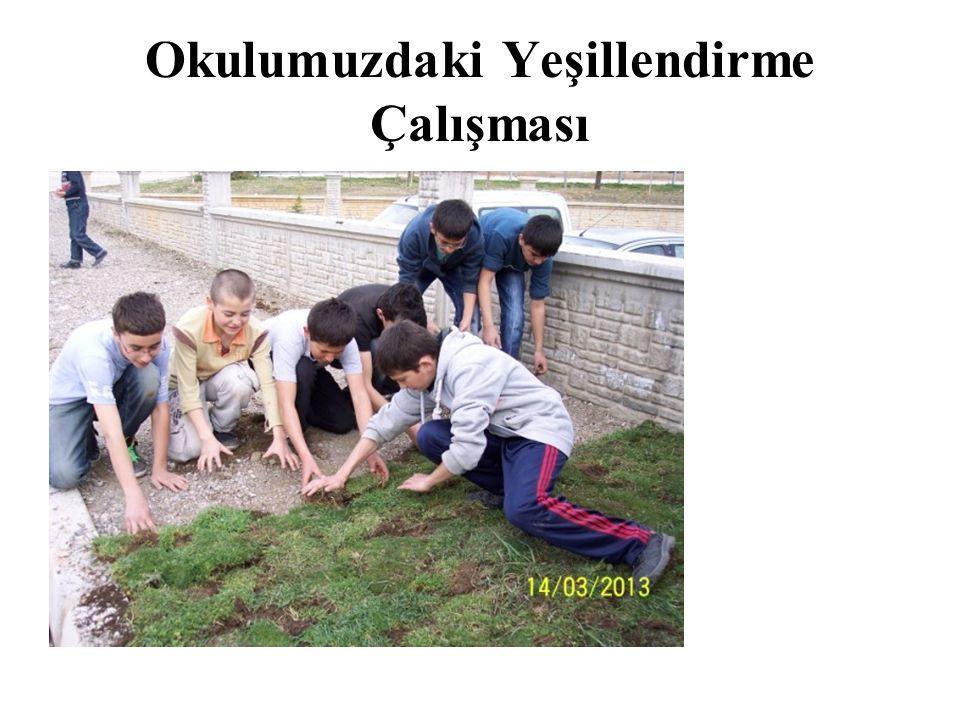 Okulumuzdaki Yeşillendirme Çalışması