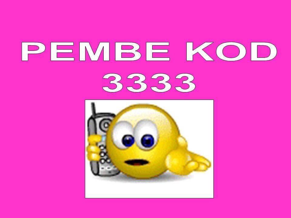 PEMBE KOD 3333
