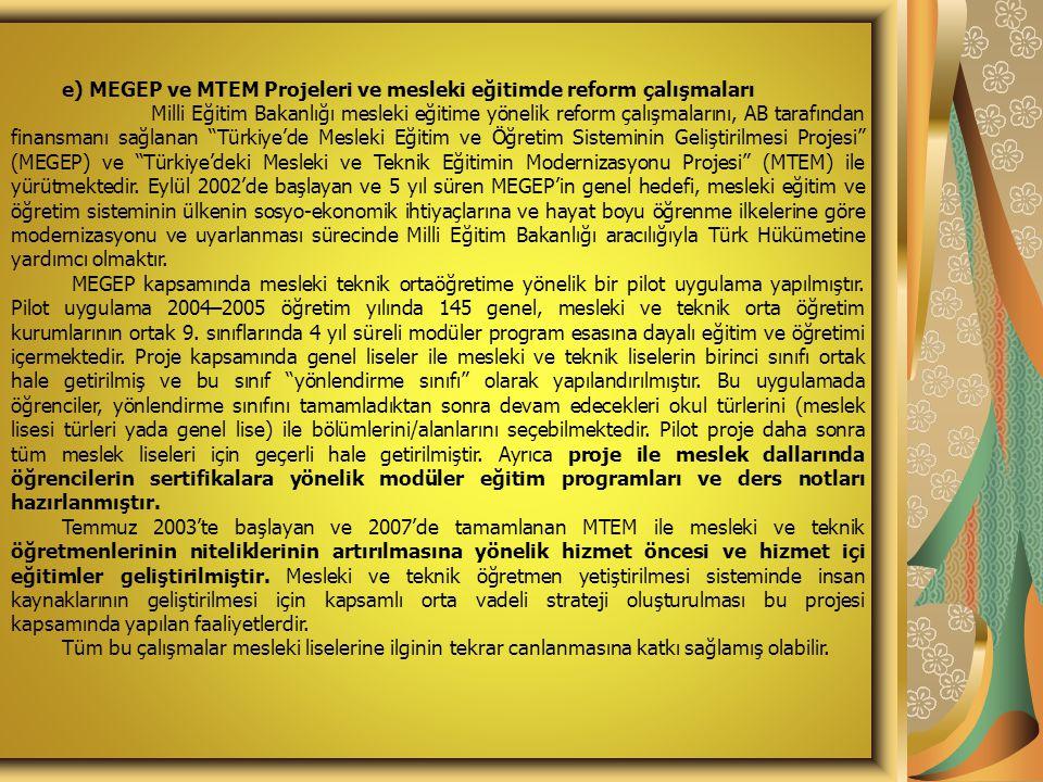 e) MEGEP ve MTEM Projeleri ve mesleki eğitimde reform çalışmaları