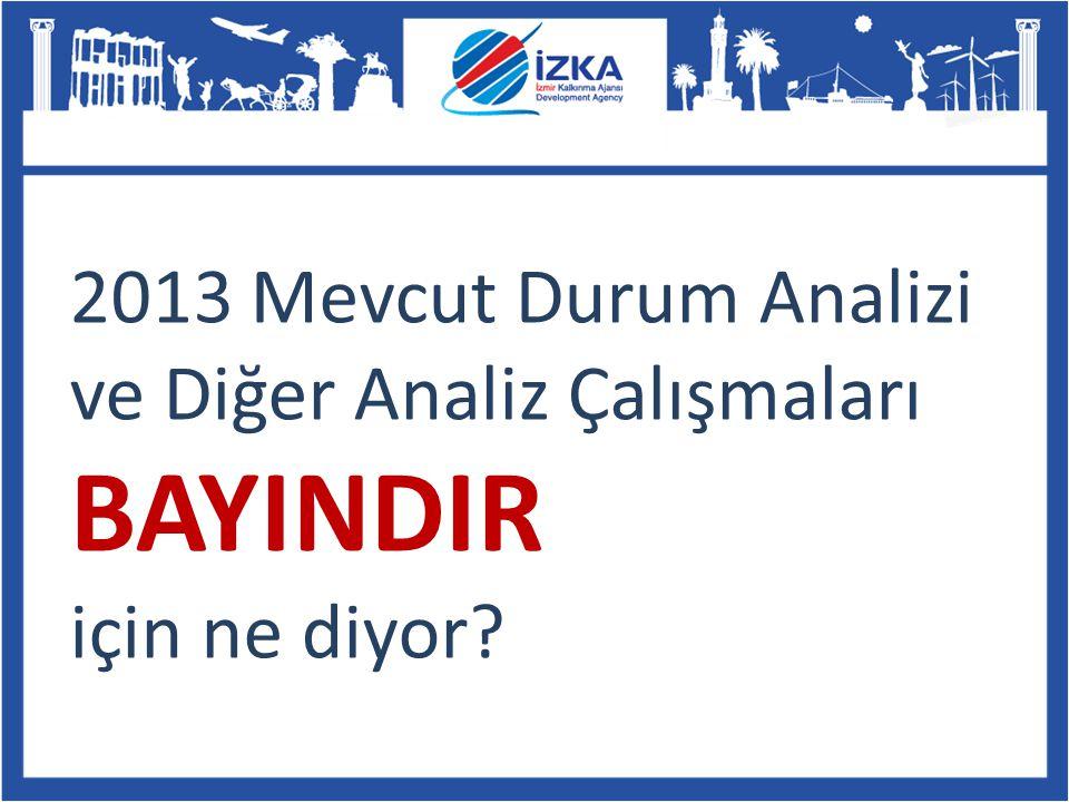 2013 Mevcut Durum Analizi ve Diğer Analiz Çalışmaları BAYINDIR için ne diyor