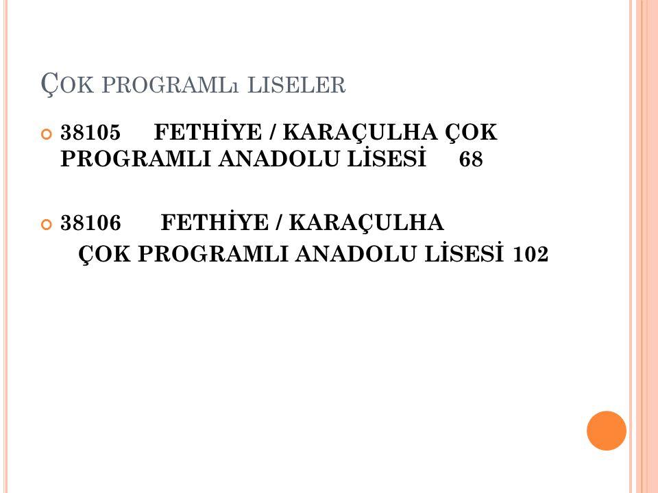 Çok programlı liseler 38105 FETHİYE / KARAÇULHA ÇOK PROGRAMLI ANADOLU LİSESİ 68. 38106 FETHİYE / KARAÇULHA.