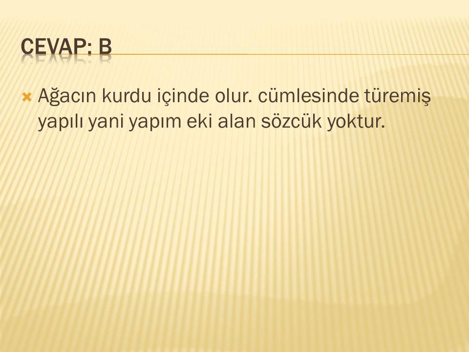 CEVAP: B Ağacın kurdu içinde olur. cümlesinde türemiş yapılı yani yapım eki alan sözcük yoktur.
