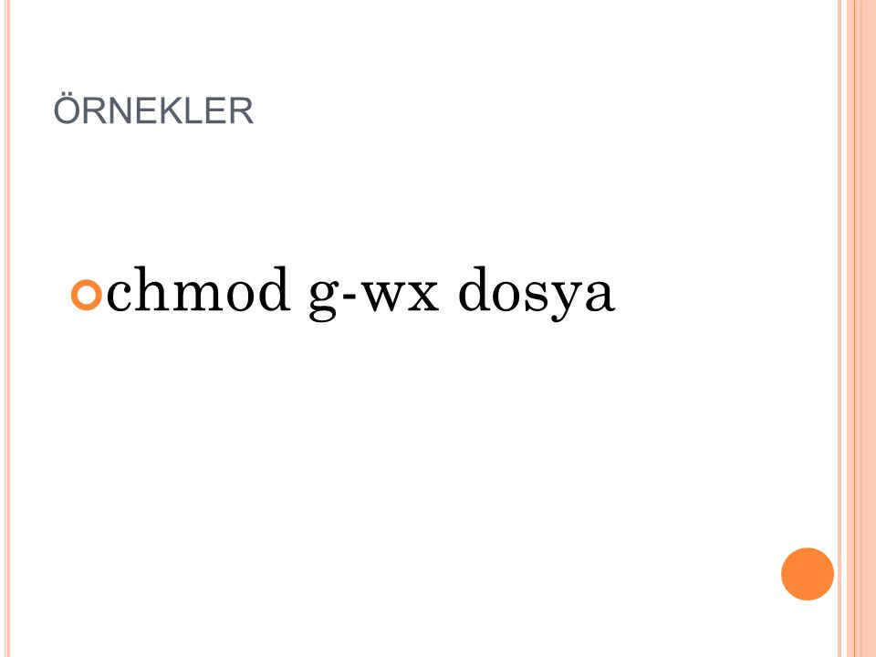 ÖRNEKLER chmod g-wx dosya