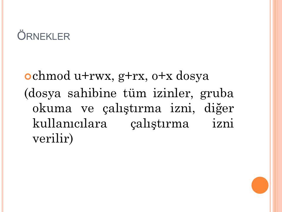 chmod u+rwx, g+rx, o+x dosya