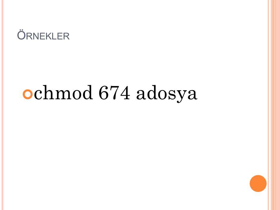 Örnekler chmod 674 adosya