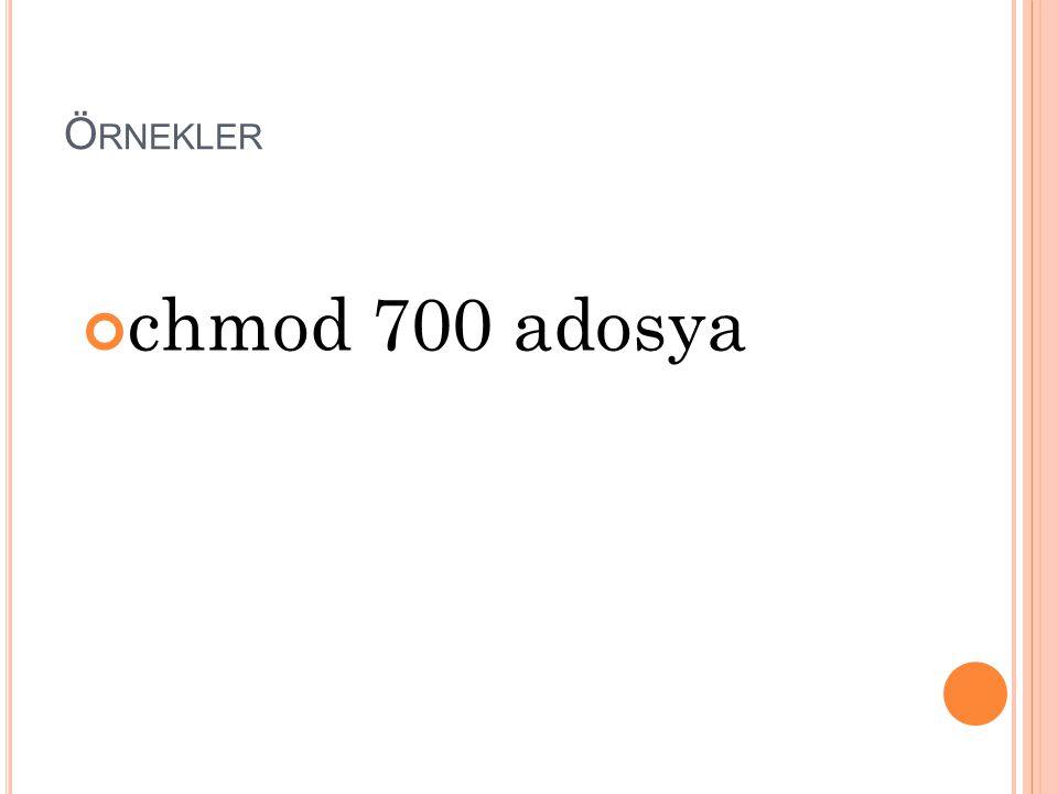 Örnekler chmod 700 adosya