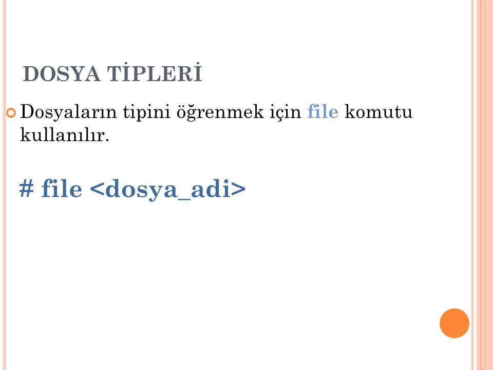 # file <dosya_adi>