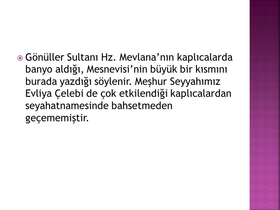 Gönüller Sultanı Hz.