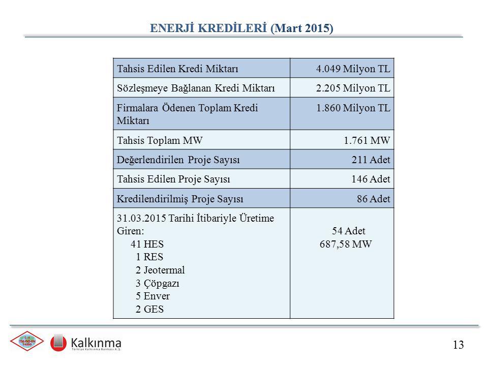ENERJİ KREDİLERİ (Mart 2015)
