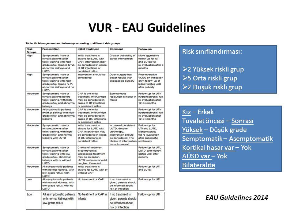 VUR - EAU Guidelines Risk sınıflandırması: 2 Yüksek riskli grup