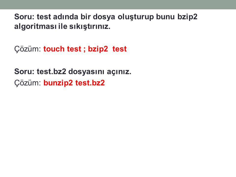 Soru: test adında bir dosya oluşturup bunu bzip2 algoritması ile sıkıştırınız.