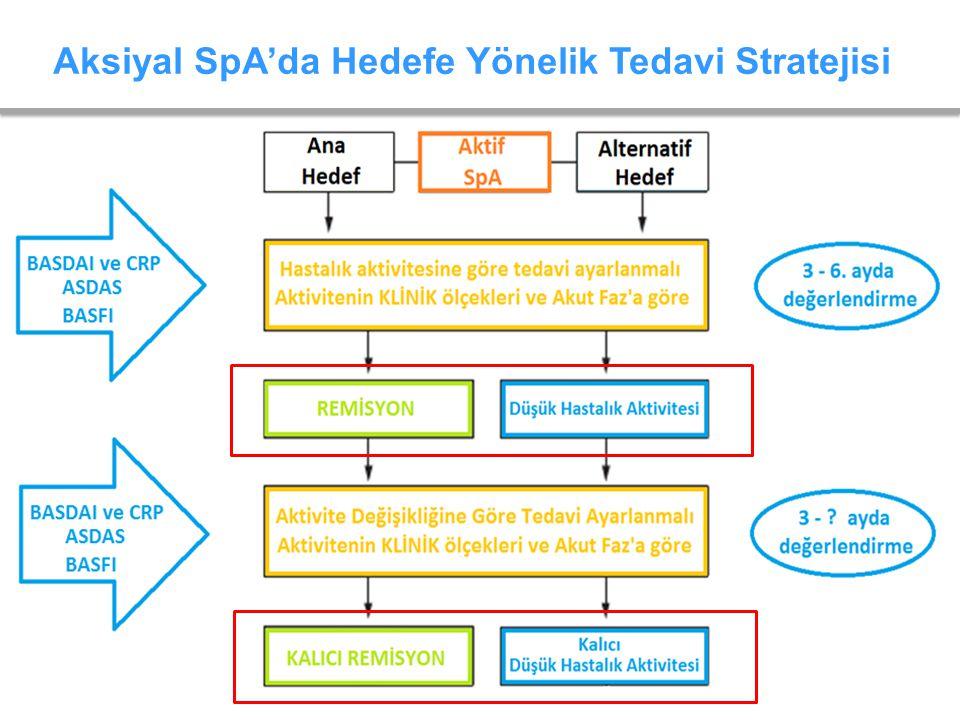 Aksiyal SpA'da Hedefe Yönelik Tedavi Stratejisi