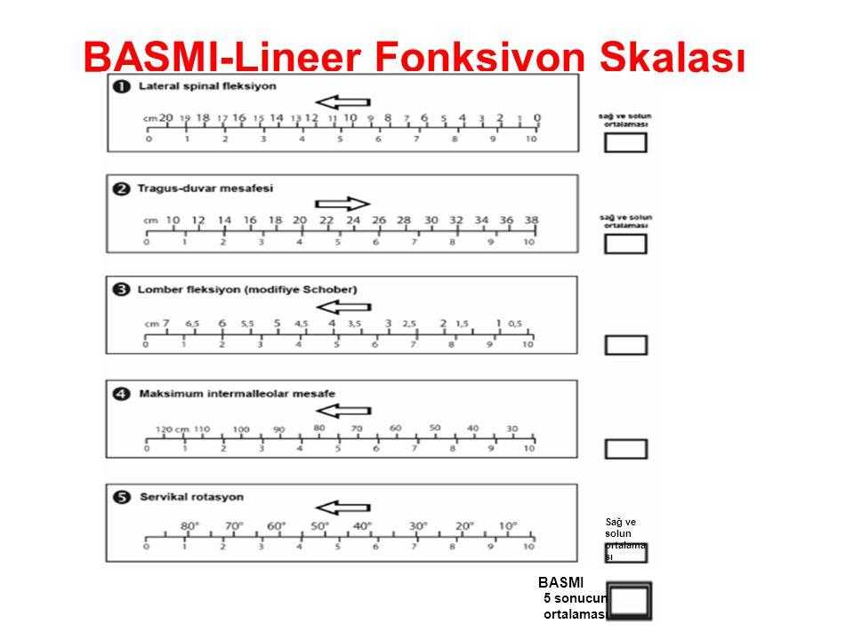 BASMI-Lineer Fonksiyon Skalası