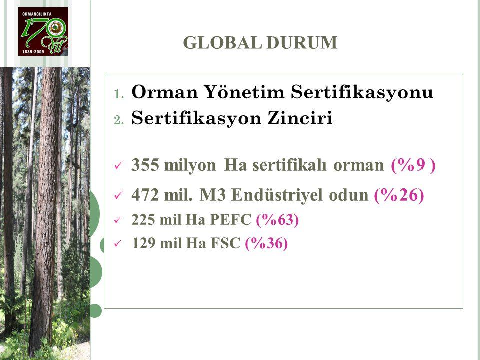 Orman Yönetim Sertifikasyonu Sertifikasyon Zinciri