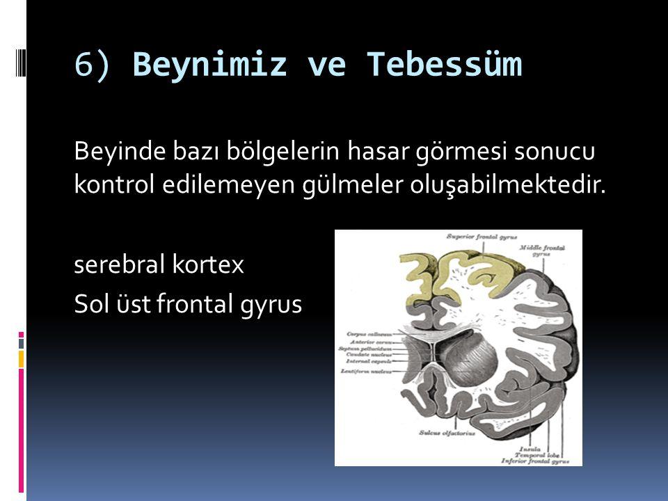6) Beynimiz ve Tebessüm