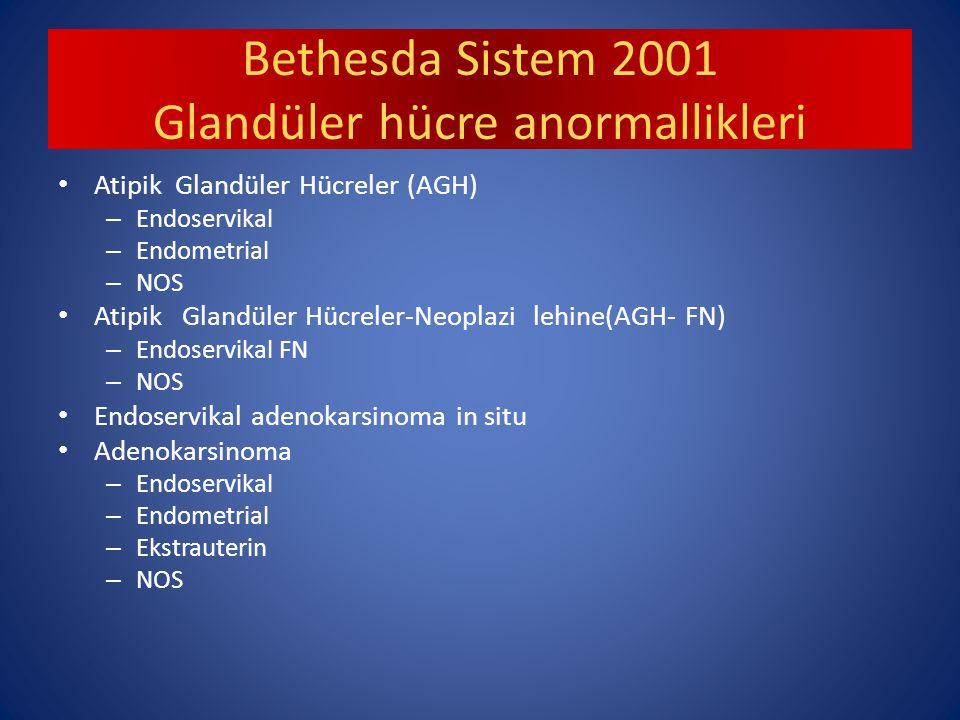 Bethesda Sistem 2001 Glandüler hücre anormallikleri
