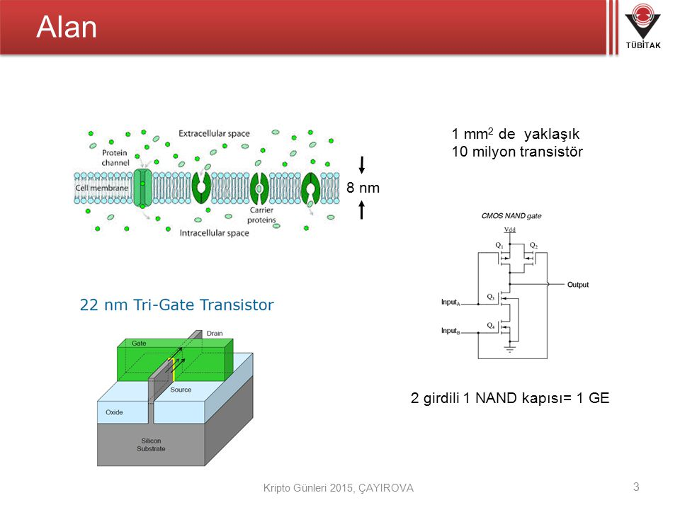 Alan 1 mm2 de yaklaşık 10 milyon transistör 8 nm