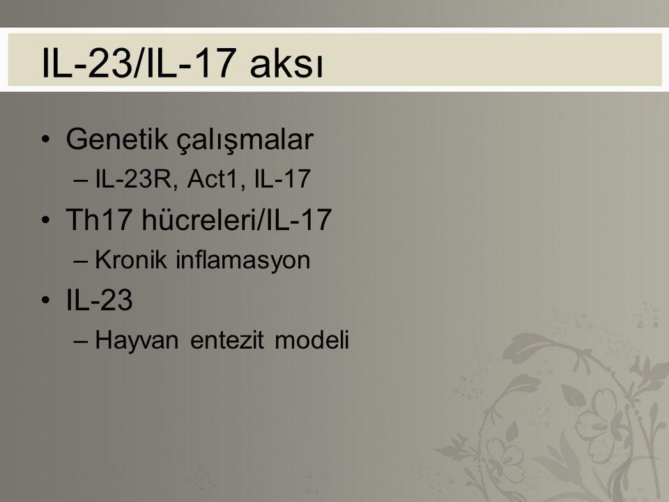 IL-23/IL-17 aksı Genetik çalışmalar Th17 hücreleri/IL-17 IL-23