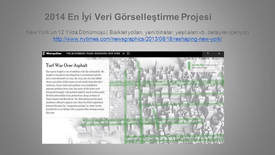 2014 En İyi Veri Görselleştirme Projesi