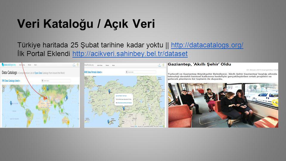 Veri Kataloğu / Açık Veri