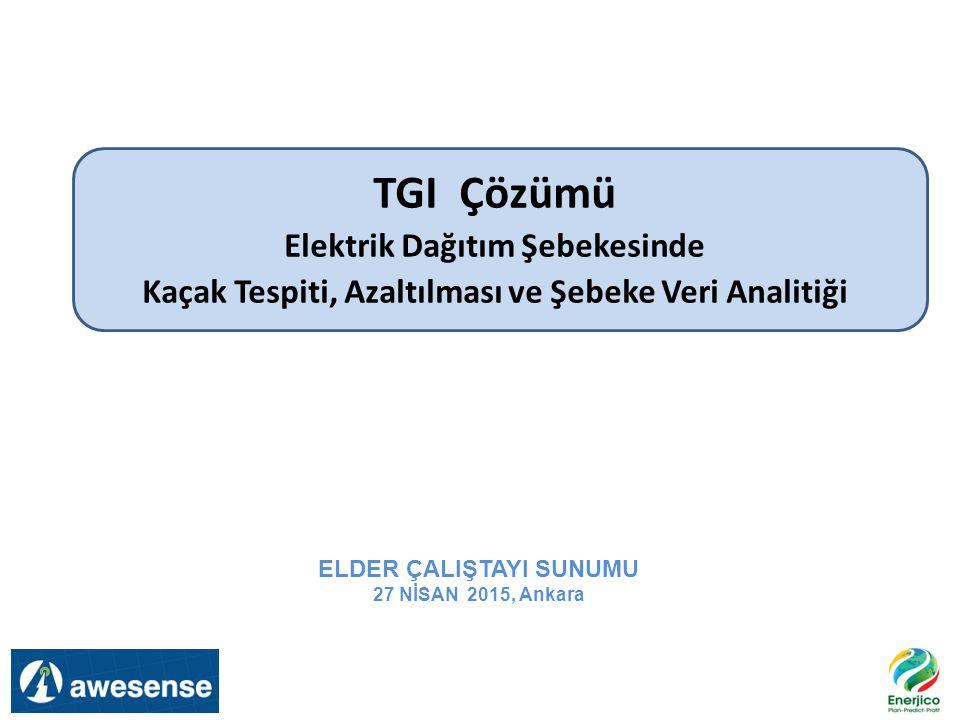 TGI Çözümü Elektrik Dağıtım Şebekesinde